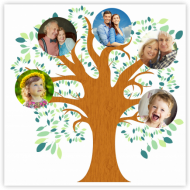 Poster, Family Tree, 30x30 cm