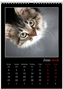 Calendar, Black&white, 30x40 cm